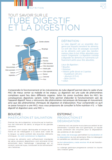 tube digestif et digestion